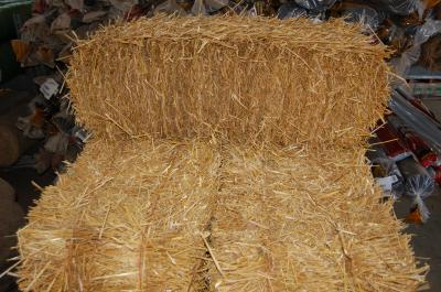 Straw (bale)